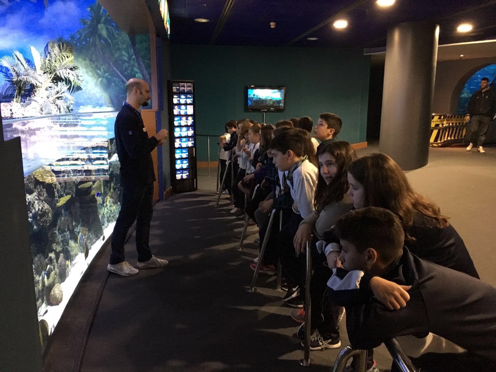 Visita a l'aquari